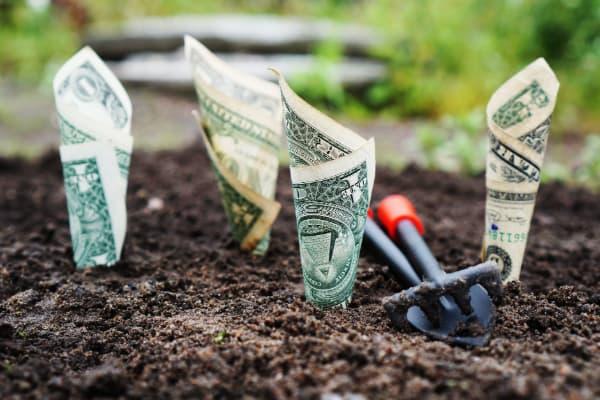 Ansoff - blog - grow money-1