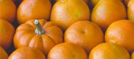 personas-maken-voor-marketing-270x120.jpg